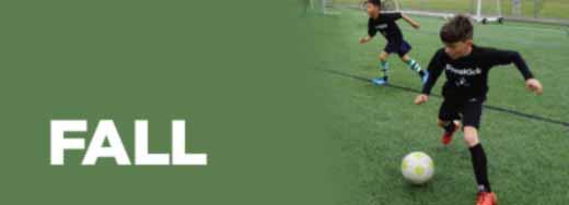 Free Kick Fall League